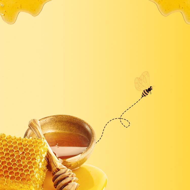 Amazing Facts of Honey Bee