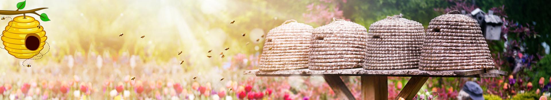 Honey Bee Garden - GeoHoney