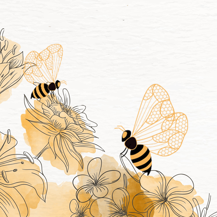 Pollination by Honey Bees