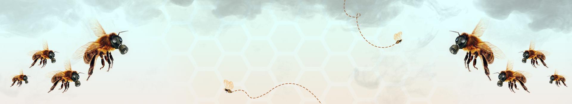 Honey Bee Problems - GeoHoney