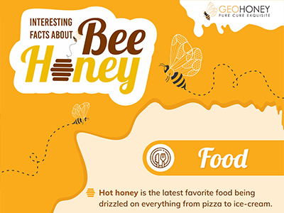 Interesting Facts About Bee Honey