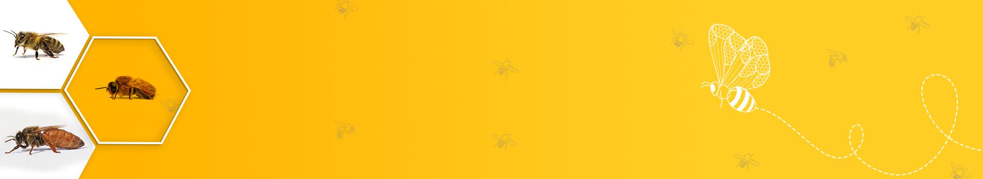 Bee honey - Geohoney