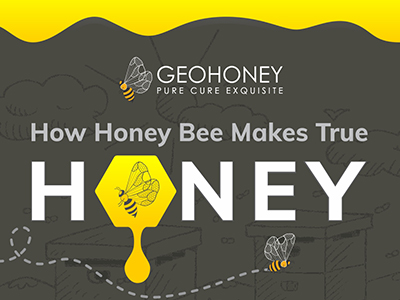 How Honey Bee Makes True Honey