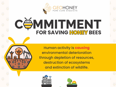 Commitment for Saving Honey Bees
