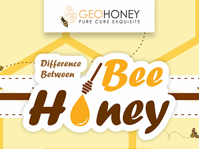 Difference Between Bee Honey