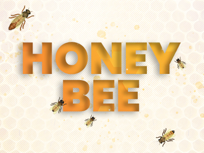Knowing Everything About The Fascinating Honey Bee Biology