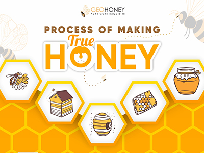 Process of Making True Honey