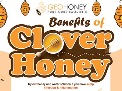 Benefits of Clover Honey
