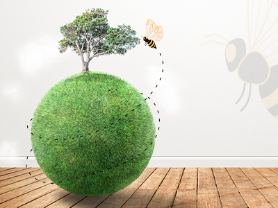 Are Honey Bees Helping The Environment? Let's Know The Truth!
