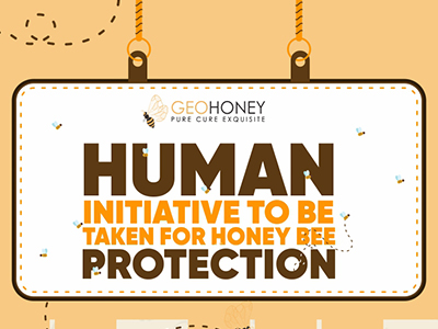 Human Initiative to Be Taken For Honey Bee Protection