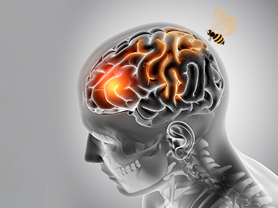 Natural Honey - Its Neurological Effect Is Worth Knowing!