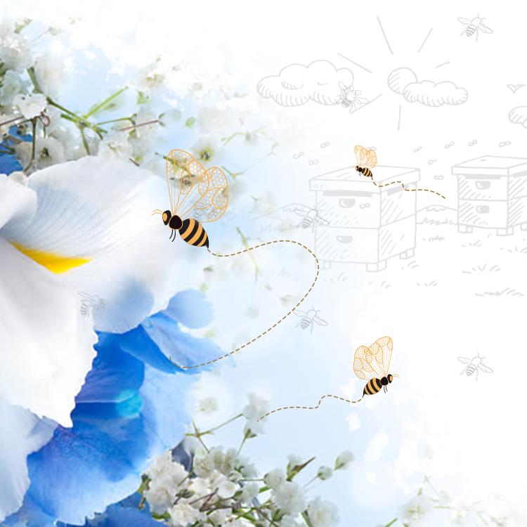Ways of attracting honey bees