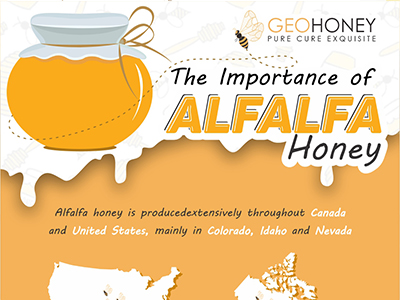 The Importance of Alfalfa Honey