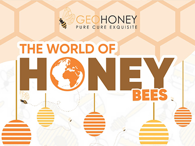 The World of Honey Bees