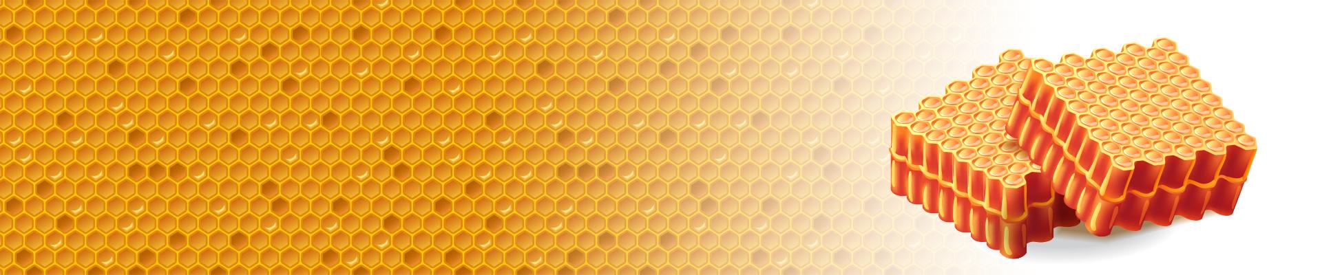 Hexagonal Shape Of Honeycomb Cells