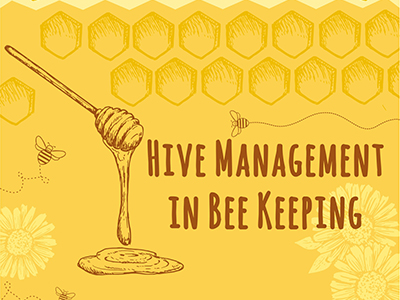 Honey Bee Hive Management