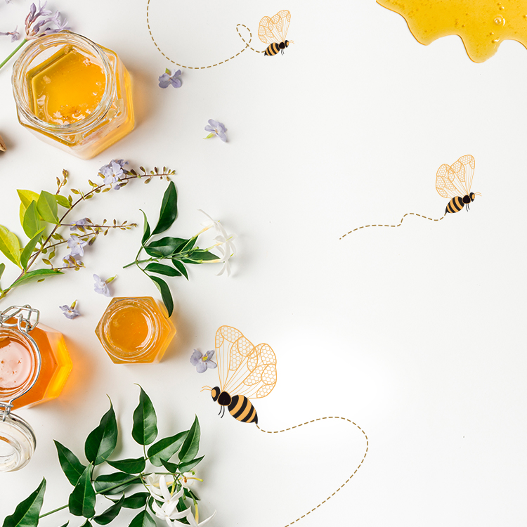 Plants & Flowers Producing True Honey