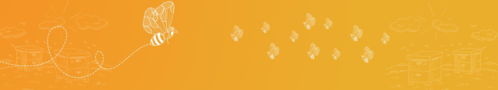 Facts about Honey Bee Queen - Geohoney