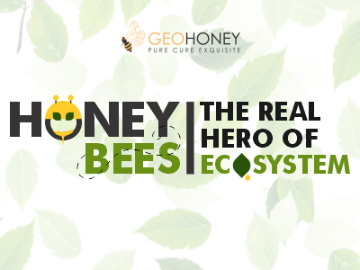 Honey Bees: The Real Hero Of Ecosystem