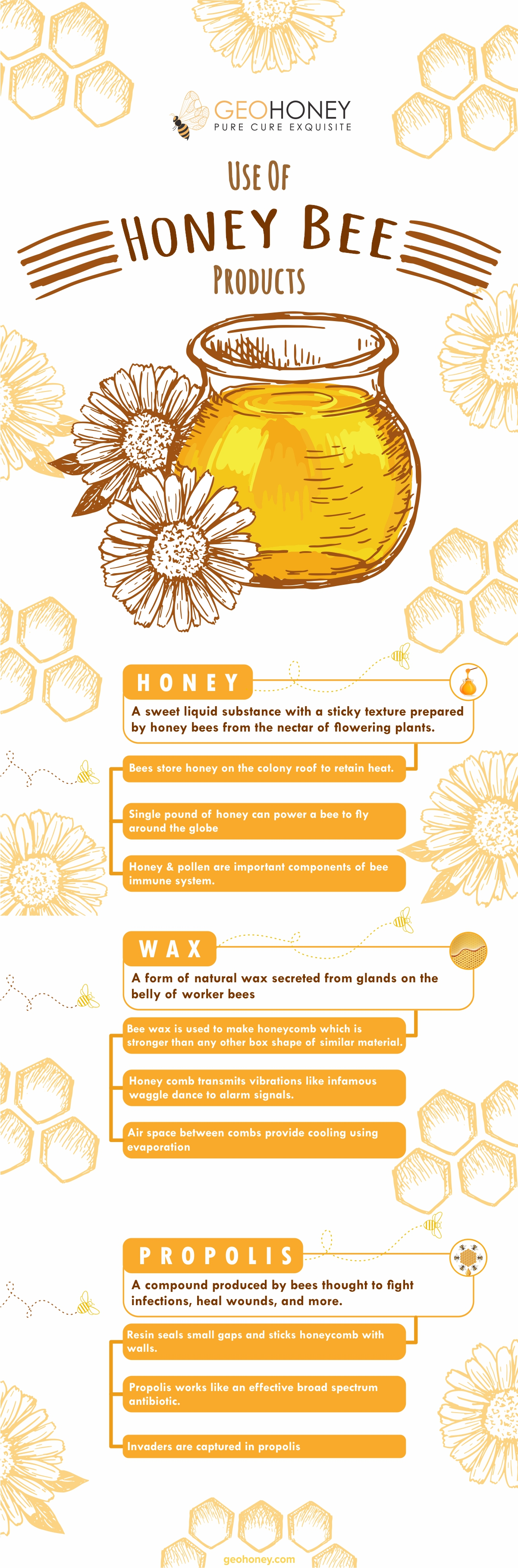 Use Of Honey Bee Products-Geohoney