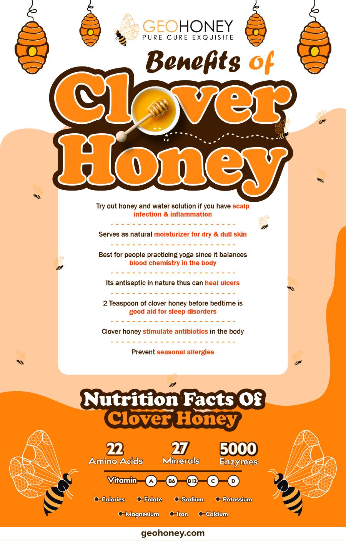 Clover honey benefits - Geohoney