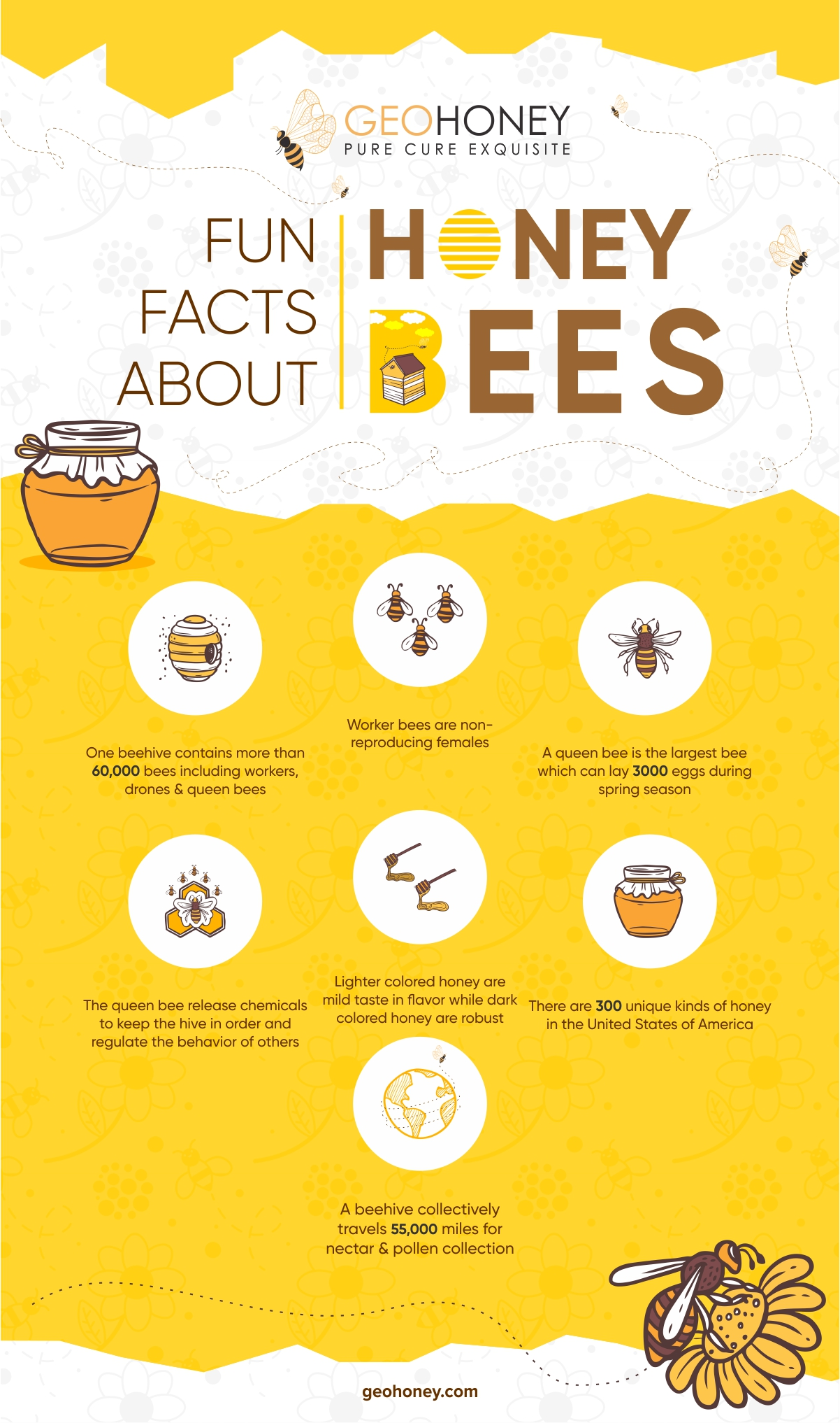 Facts about honey bees - Geohoney