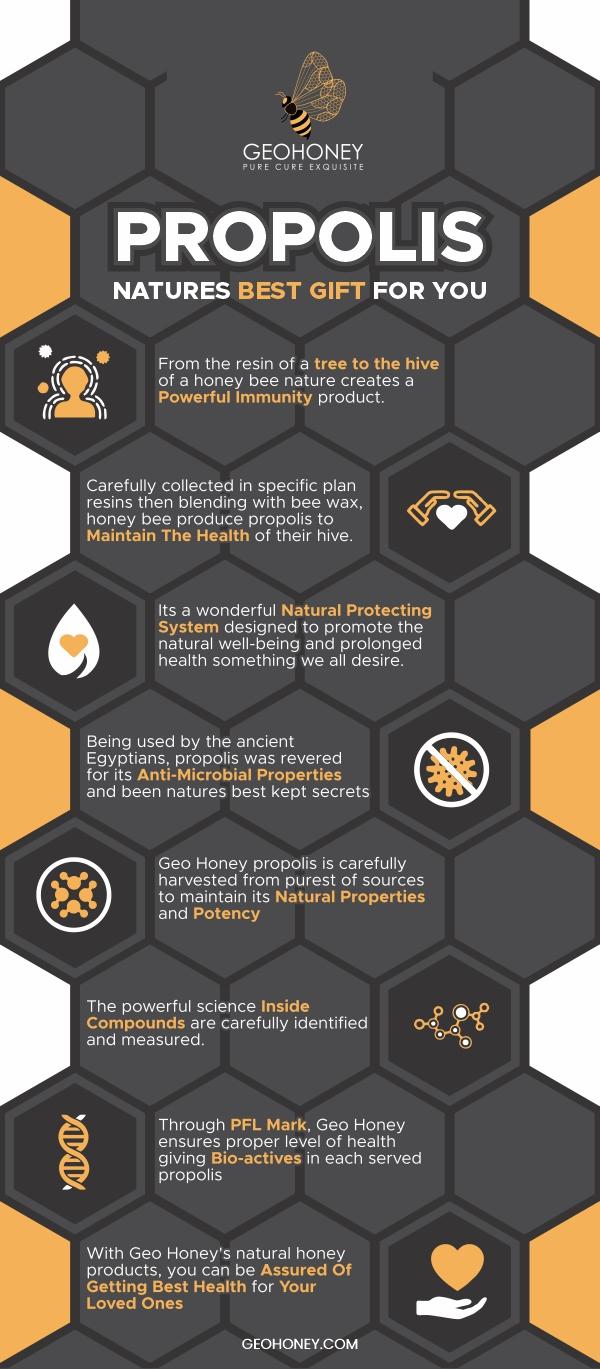 Propolis Infographic