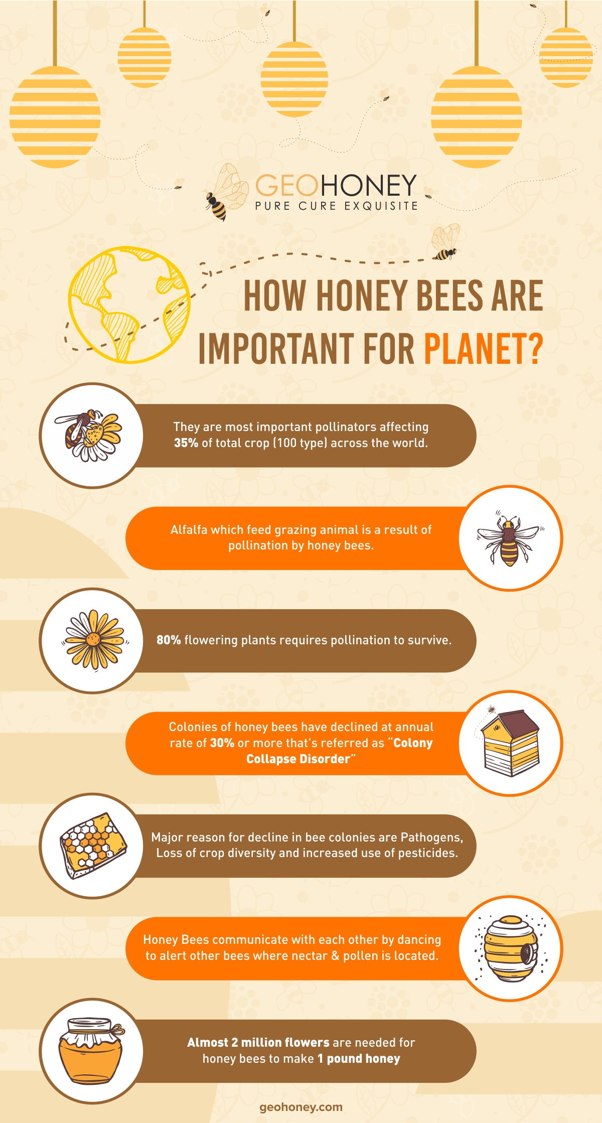 Honey bees are important -Geohoney