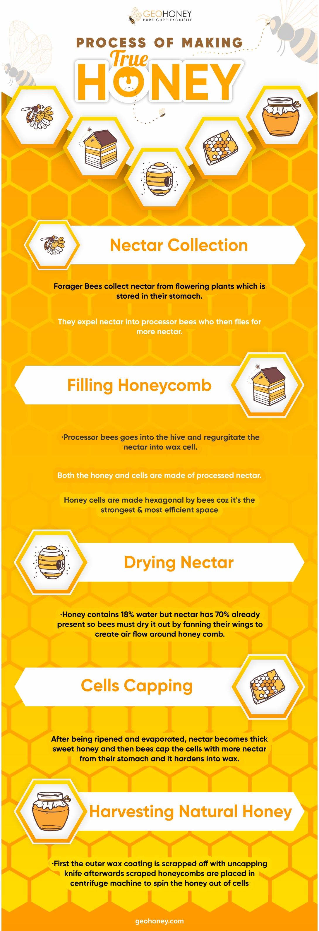 True honey process - Geohoney