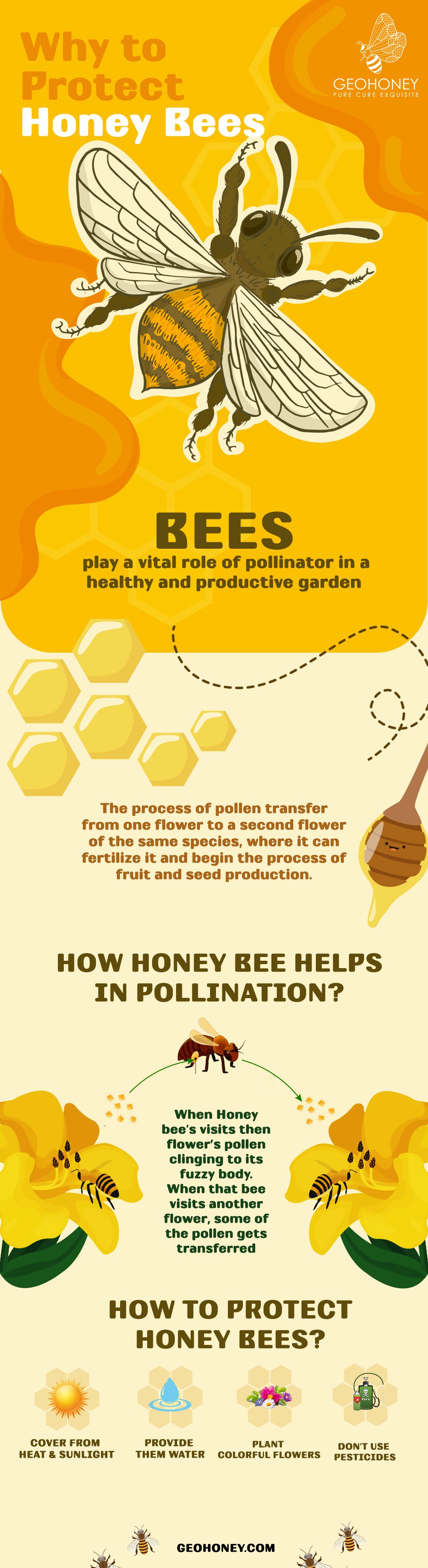 Protect Honey Bees - Geohoney