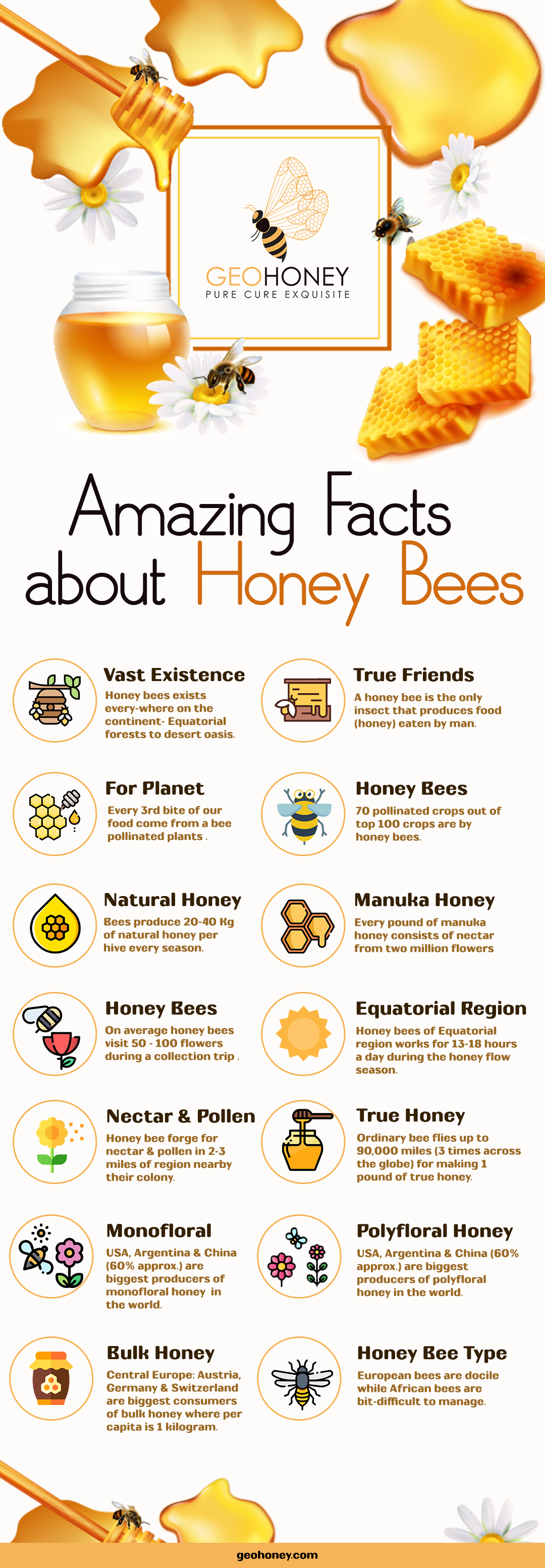 Honey bee facts - Geohoney